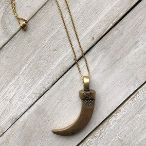 Brass Claw Pendant with Gold Plated Chain